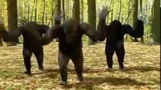 Azis hop tenidis YouTube