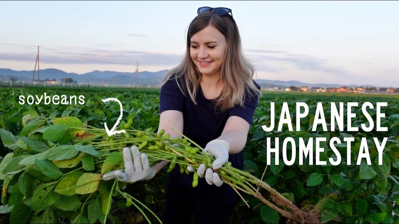 Download My Japanese Farm Homestay Experience 🌾