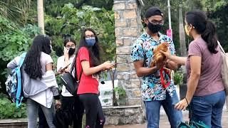 Taking My Hen For A Walk In Public || Desi Murgi 🐔|| [Funny Reaction Video 🤣]