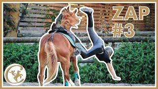 ZAP CHEVAL #3
