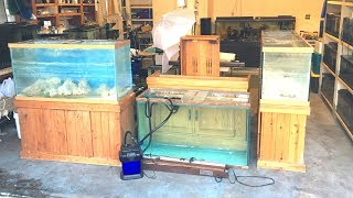 What Was I Thinking?!? - Saltwater Fish Tank Haul