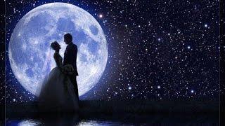 Армянская свадьба  89183029665