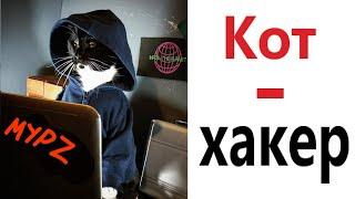 Лютые приколы КОТ - ХАКЕР Самое смешное видео Засмеялся проиграл – Domi Show