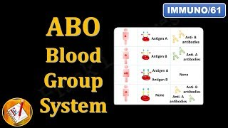 ABO Blood Group System (FL-Immuno/61)