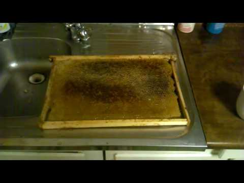 Мед для похудения - Как правильно использовать мед для