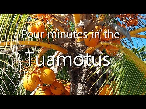 Four Minutes in The Tuamotus