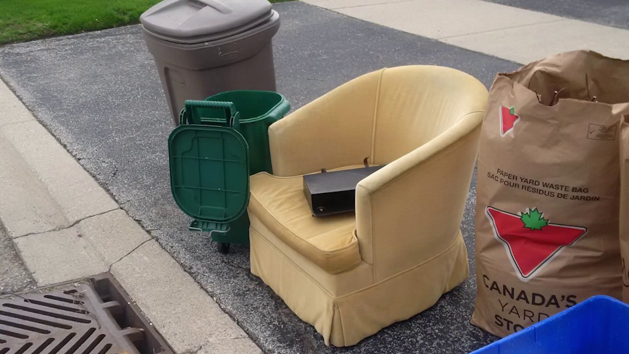 Bed Bugs Used Furniture