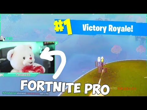 I played Fortnite as a teddy bear and won