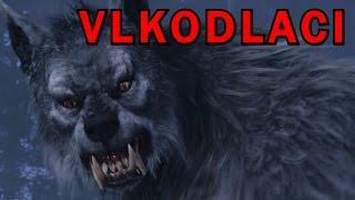 Top 5 vlkodlaků zachycených na kameru