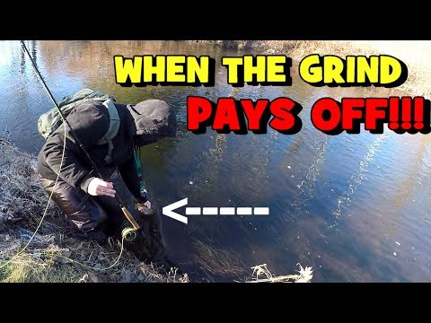 The GRIND Finally PAID OFF...! 😀 (Connecticut Fishing Session)