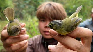 Bẫy Lưỡi Chim Sâu Và Lấy Củi Cùng Bố | Dân Tộc Tây Bắc Tv