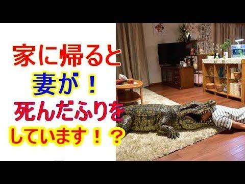 榮倉奈々・安田顕主演映画「家に帰ると妻が必ず死んだふりをしています」来春公開!