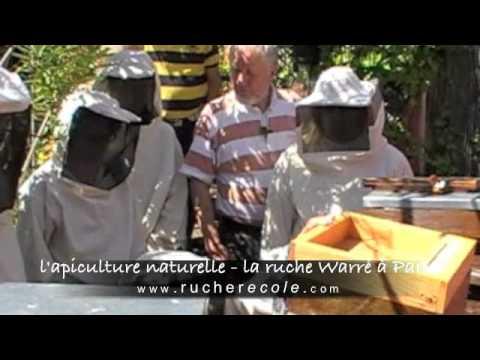 rucher école l'apiculture naturelle à Paris - la ruche Warré - organic beekeeping in France