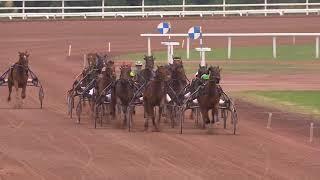 Vidéo de la course PMU PRIX SECHE ENVIRONNEMENT