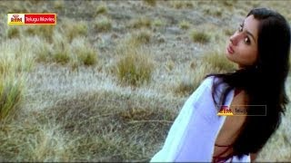Brahma oh Brahma Enta Mudduga Undi Gumma - Gemini Telugu Movie Songs - Venkatesh,Namitha
