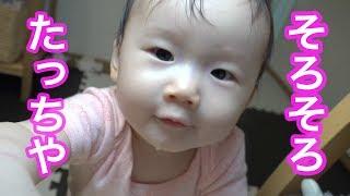 動画始まる前やちょっとした休憩に読む用⭐   赤ちゃんがそろそろたっち...