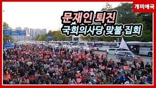 대깨문과 함께하는 국회의사당 앞 문화대축제.19.10.…