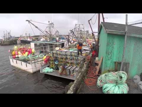 Southwest Nova Scotia Lobster Fishery