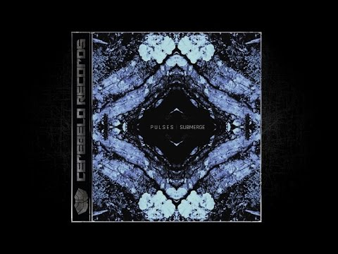 Pulses - Sonar (Original Mix)