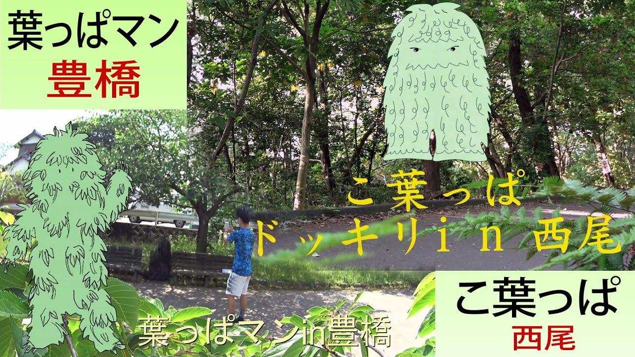 葉っぱマン西尾と豊橋【ドッキリ】/ Leaf Man -  Nishio and Toyohashi City Pranks 11