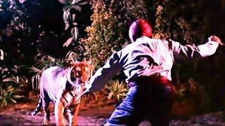 Сандокан, тигр южных морей Sandokan, la tigre di ...