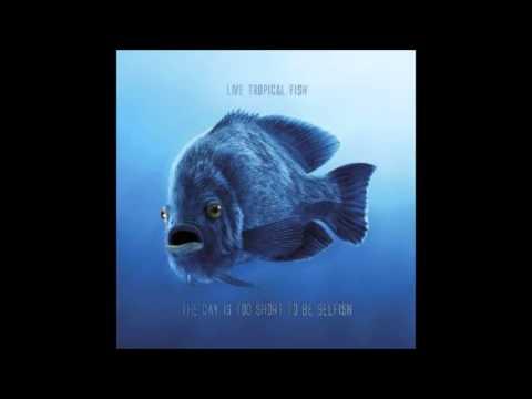 Breathe Again   Tropical Fish feat Laurnea