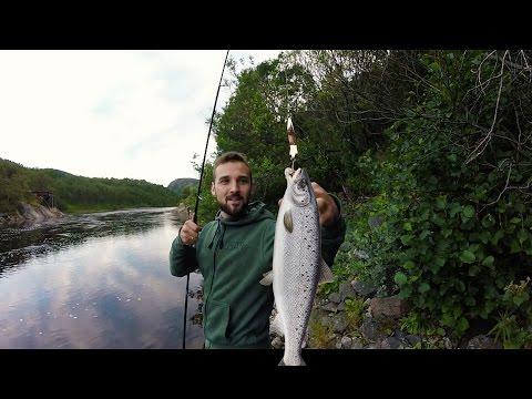 ловля лосося в мурманской области