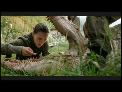 Annihilation Director 'Disappointed' By Netflix Distribution