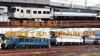 2019,12,25 輸送障害で遅れた遅延貨物列車16本!!昼間に回送された185系も!