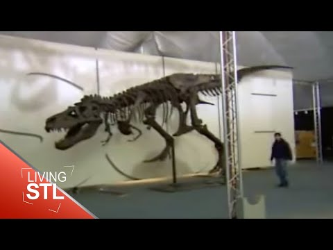KETC | Living St. Louis | T-Rex