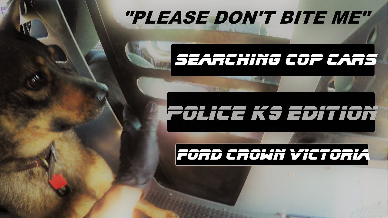 Ford Crown Victoria 2017 >> Searching Cop Cars K9 Unit Edition Police cruiser explore Ford Crown Victoria - YouTube