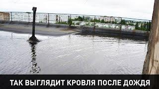 [Новости Энергодара] В Энергодаре из-за дождя «утонули» квартиры