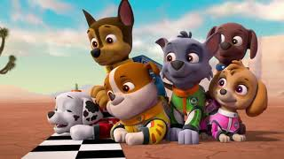 """Paw Patrol: Ready Race Rescue 