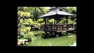 Música Instrumental tradicional Japonesa Koto Sakura