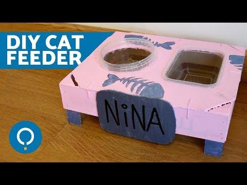 diy-cat-food-bowl-😺-crafts-for-cats