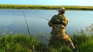СИБИРСКАЯ ГЛУШЬ РАЗДАЁТ САЗАНОВ Рыбалка на дикой реке карась сазан рыбалка 2021 прёт