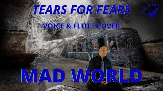 MAD WORLD. Tears for Fear. Flute Cover
