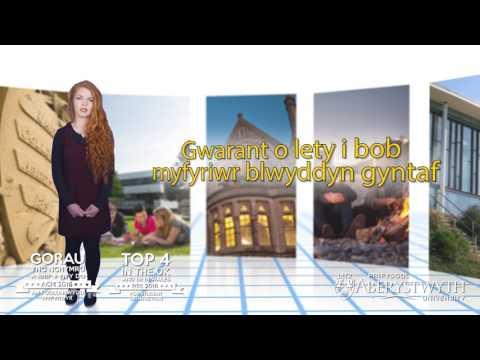 Astudio trwy gyfrwng y Gymraeg – Israddedig