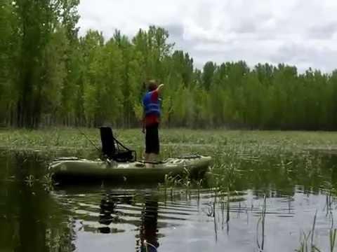 Bowfishing For Carp In A Kayak!