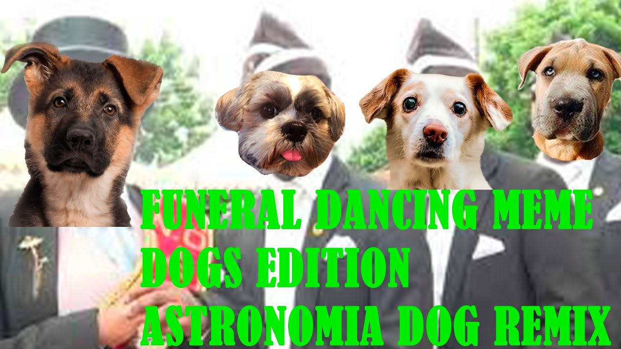 DANCING WITH COFFIN MEME DOG EDITION   Astronomia Dog ...
