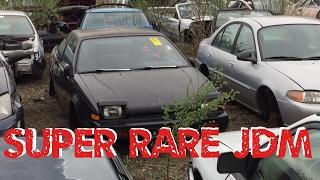Junkyard Exploring| Search For A RARE Honda