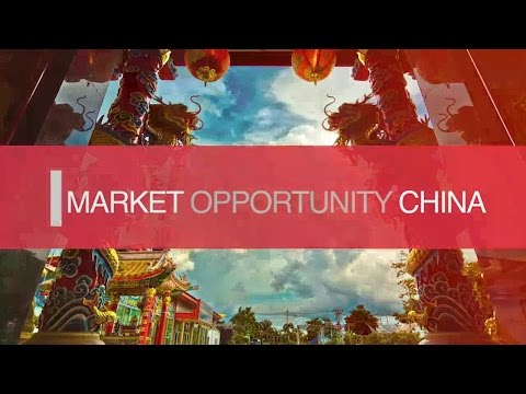 Market Opportunity China