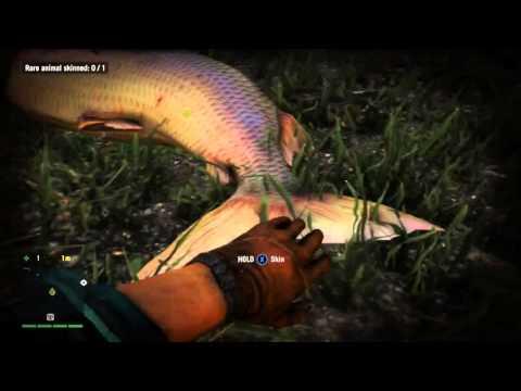far cry 4 how to kill fish