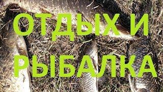 Рыбалка в омской области Щука Карась