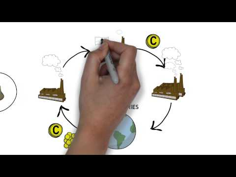 How Carbon Credits Work In Less Than 2 Minutes - Qiewie