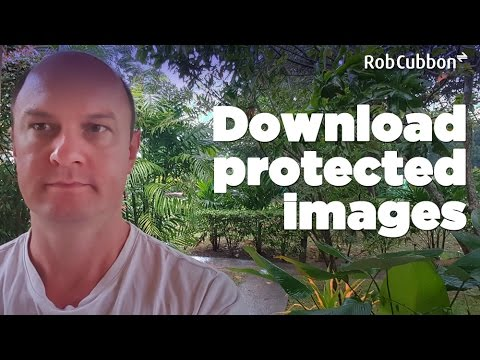 "Download Protected Images from Browser when Right-Click ""Save image As"" is Disabled"