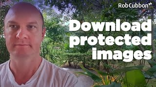 """Download Protected Images from Browser when Right-Click """"Save image As"""" is Disabled"""