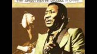 Muddy Waters & Johnny Winter  Walking Thru The Park