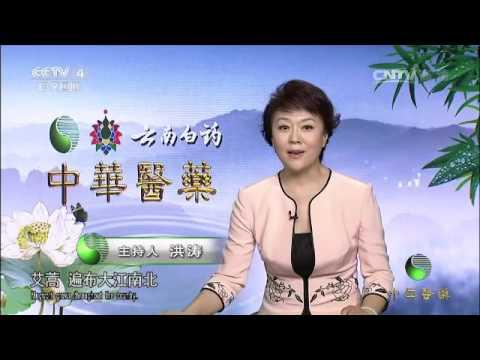 20160608 中华医药  端午寻艾