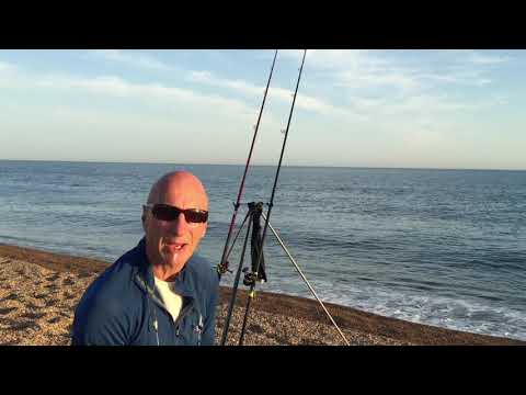 Chesil Beach Back On Form. Sea Fishing Chesil Beach East Of Abbotsbury. June 23rd And 24th 2020.